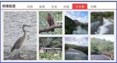 「相簿首選」入選作品:相簿首選-新北市雙溪.jpg