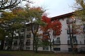日本賞楓九天Day3--東北-十和田湖~燒山 :IMG_8081.JPG