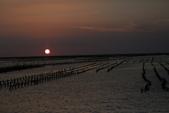 台南沿海生態、鹽田風光與落日:074A4554.JPG