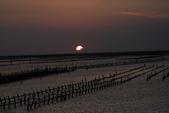 台南沿海生態、鹽田風光與落日:074A4558.JPG