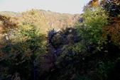 日本賞楓九天 Day6--東北-鳴子峽 :IMG_8856.JPG