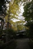 日本賞楓九天 Day5--東北-角館清晨與傍晚 :IMG_8786.JPG