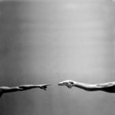 芭蕾圖片收藏本:1859066562.jpg