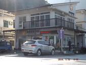 茂林紫斑蝶:DSCF5358.JPG