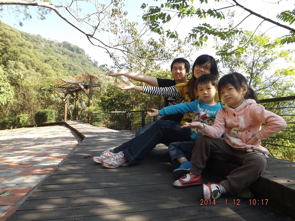 茂林紫斑蝶:DSCF5398.JPG