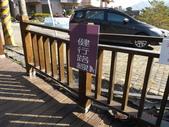 茂林紫斑蝶:DSCF5367.JPG