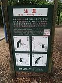 2017大阪第二天奈良半日遊:P_20170629_101702_vHDR_On.jpg