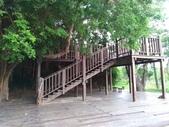 漯底山自然公園:P_20170718_172517_vHDR_Auto.jpg