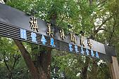 2008大羊花蓮行:2008大羊花蓮行_004縮圖.JPG