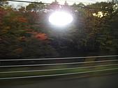 北海道賞楓.雪景:日本北海道旅行 018.jpg