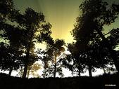 未分類相簿:sunday morning.jpg