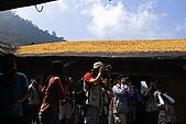 花蓮六十石山、赤科山--賞金針忘憂鬱:2008-08-17_09-47-57_焦點.jpg