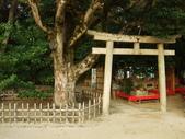 11/14~18從高雄岡山到日本岡山散步~Day1岡山後樂園(傻瓜數位版):DSCF9976.JPG