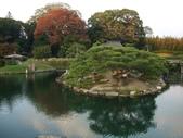 11/14~18從高雄岡山到日本岡山散步~Day1岡山後樂園(傻瓜數位版):DSCF9981.JPG