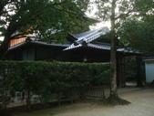 11/14~18從高雄岡山到日本岡山散步~Day1岡山後樂園(傻瓜數位版):DSCF9972.JPG