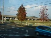 11/14~18從高雄岡山到日本岡山散步~Day1岡山後樂園(傻瓜數位版):DSCF9962.JPG