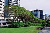 紐西蘭遊記3-前進Wellington:威靈頓市區馬路公園
