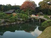 11/14~18從高雄岡山到日本岡山散步~Day1岡山後樂園(傻瓜數位版):DSCF9980.JPG