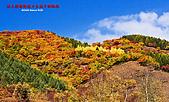 2008年內蒙古壩上攝影:081001圍場縣御道口鄉至城子鄉路段-350D-8121.jpg