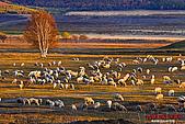 2008年內蒙古壩上攝影:080930河頭村-350D-8088.jpg