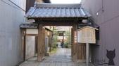 2012 阪京夜櫻之旅:IMG_5501.jpg