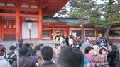 2012 阪京夜櫻之旅:IMG_5527.jpg