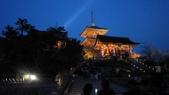 2012 阪京夜櫻之旅:IMG_5943.jpg