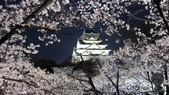 2012 阪京夜櫻之旅:IMG_6290.jpg