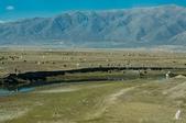 金秋北疆遊《五》:DSC_3820.jpg