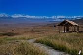金秋北疆遊《一》:DSC_3156.jpg