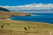 金秋北疆遊《三》:DSC_3445.jpg