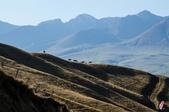 金秋北疆遊《二》:DSC_3236.jpg