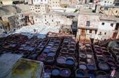 北非摩洛哥:DSC_2444菲斯皮革廠染缸的味道讓人不敢領教_副本.jpg