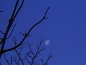 記 憶:朝月
