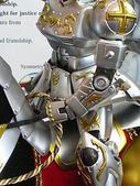 2006全球杯FINAL模型作品:DSCN2788.JPG