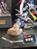 2006全球杯FINAL模型作品:DSCN2784.JPG