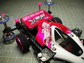 四驅車-小桃紅:DSCN9106.JPG