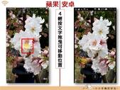 Line 編輯圖片:lineimgporg_17.jpg