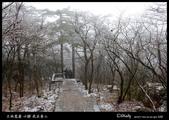 我在黃山三:IMG_6911.jpg