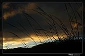 福壽山的日出:DSC_7602