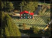遠眺福壽山農場:DSC_7698