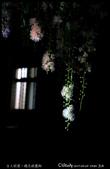 台大校園。夜的穗花棋盤腳:IMG_2351.jpg