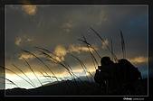 攝手和影子遊戲:DSC_7616