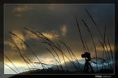 攝手和影子遊戲:DSC_7618