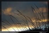 福壽山的日出:DSC_7606