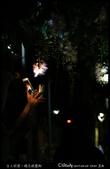 台大校園。夜的穗花棋盤腳:IMG_2376.jpg