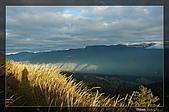 福壽山的日出:DSC_7672