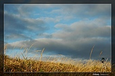 福壽山的日出:DSC_7685