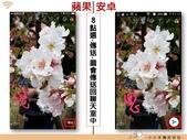 Line 編輯圖片:lineimgporg_11.jpg