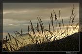 福壽山的日落霞光:DSC_7477